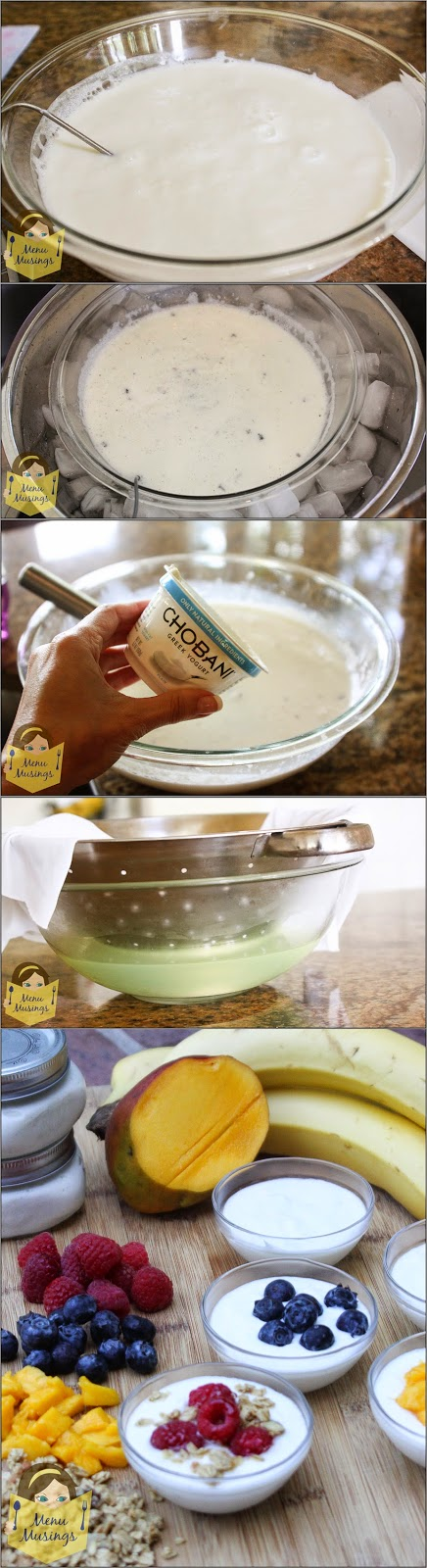 http://menumusings.blogspot.com/2014/06/super-easy-greek-style-homemade-yogurt.html