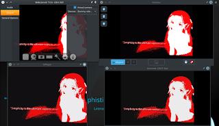 Virtual camera support