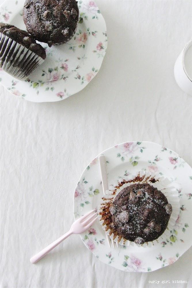 Chocolate Muffins, Double Chocolate Yogurt Muffins, High Altitude Chocolate Muffins
