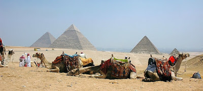 Egyptian Pyramids and camels
