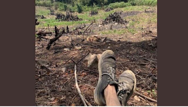 Sindir Pemerintah soal Karhutla, Rocky Gerung Tunjukkan Foto Sepatunya yang Kotor