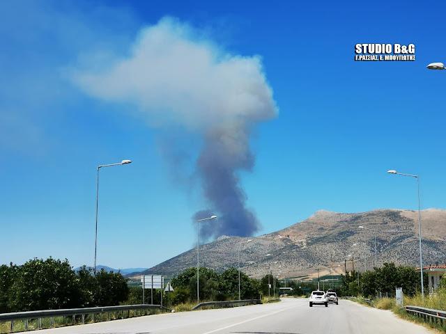 Πυρκαγιά στον αρχαιολογικό χώρο των Μυκηνών στην Αργολίδα