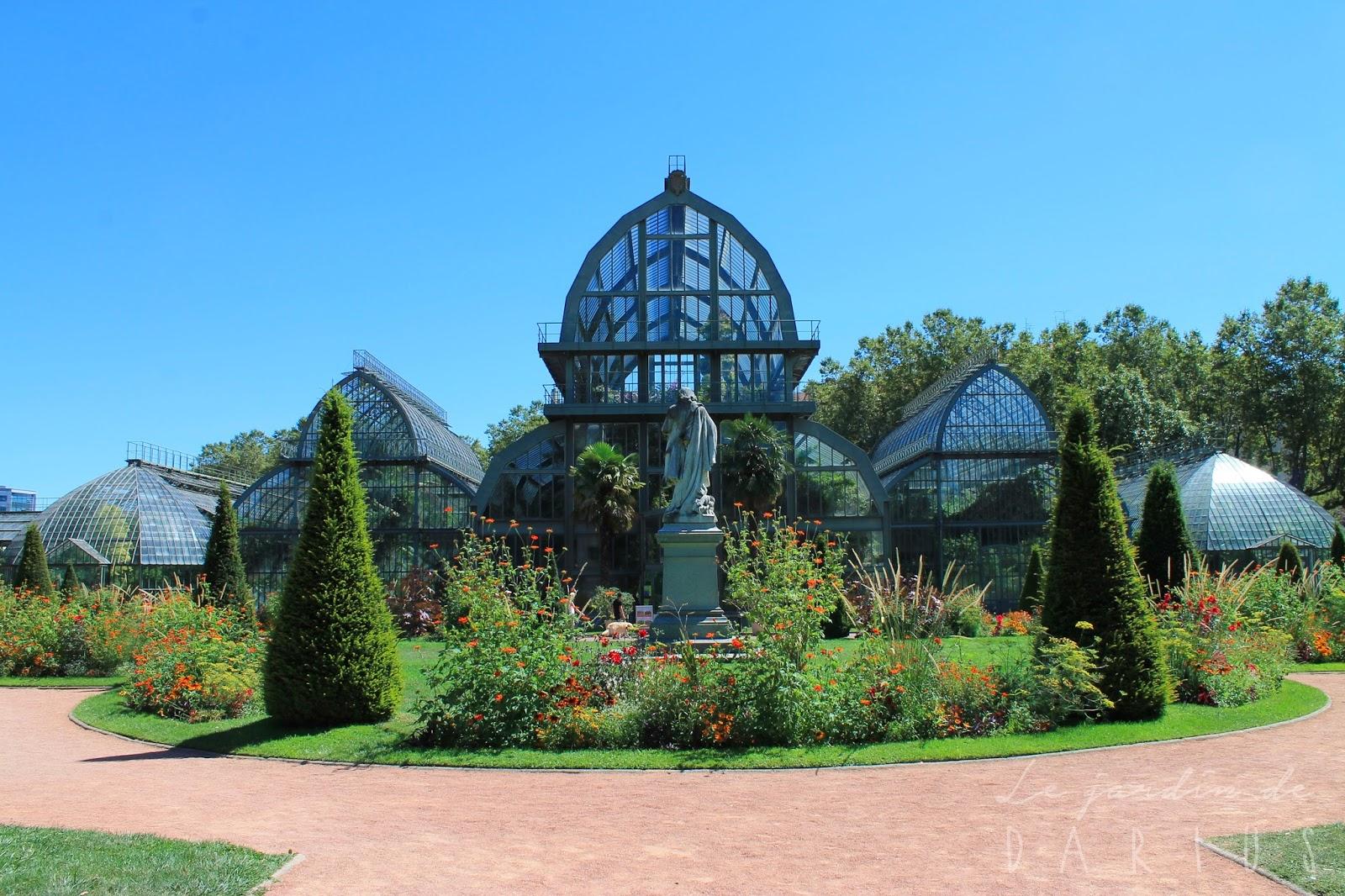Le jardin de darius r trospective ao t 2016 for Jardin zoologique de lyon