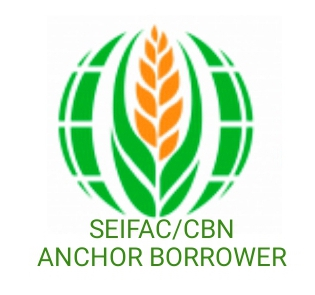 SEIFAC  / CBN Disbursement Date - Money Paying Date for SEIFAC 2021 #Arewapublisize