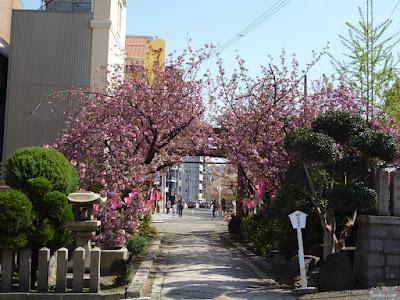 櫻宮神社献花祭