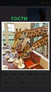 655 слов в гости через окно пришли жирафы 4 уровень