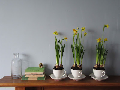 vintage books and daffodils http://snadralovesblogging.blogspot.co.uk/