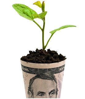 Los negocios verdes seran el futuro