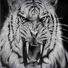 ajian macan putih asli - alirkan ajian macan putih lewat persetubuhan - aji macan sewu - ajian macan putih kejawen - doa mengisi khodam macan putih - cara mengisi khodam macan putih ke tubuh - khodam macan putih gratis - doa mengisi khodam macan putih