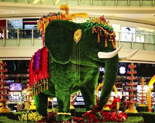 FLOWER SHOW AT INORBIT MALL WHITEFIELD