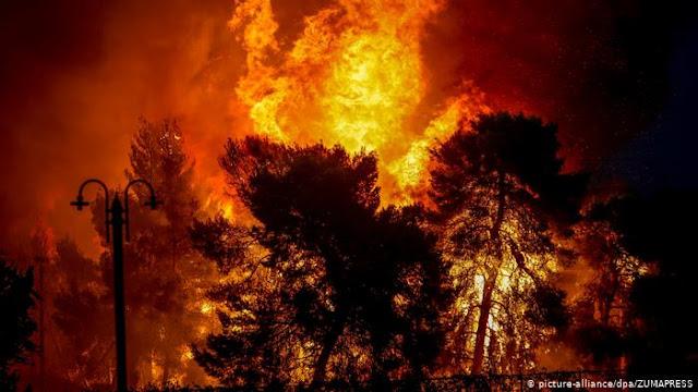 """Στέλεχος της ΜΙΤ: """"Κάψαμε ελληνικά δάση, βάλαμε βόμβες ακόμη και στην γραμμή Αθήνα - Πειραιά"""""""