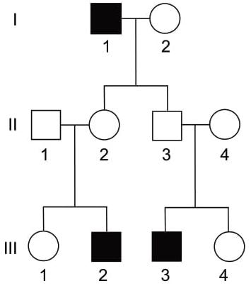 A hemofilia A é uma doença recessiva ligada ao sexo. A genealogia a seguir ilustra uma família em que os indivíduos destacados apresentam hemofilia A.