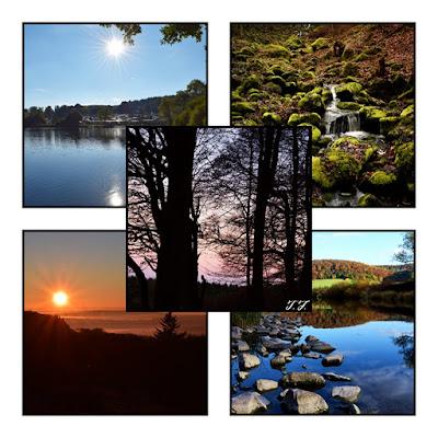 Bilder mit der Nikon D3300