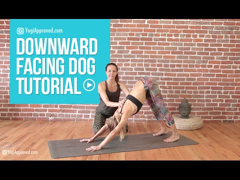 the best 20 minute yoga routine for beginners  bodyworkouts