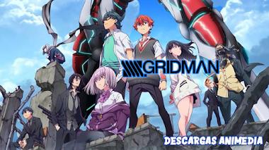 SSSS. Gridman 12/12 Audio: Japonés Sub: Español Servidor: MediaFire