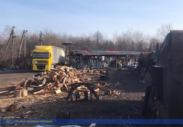 СБУ викрила схему розкрадання та нелегального експорту деревини на Житомирщині