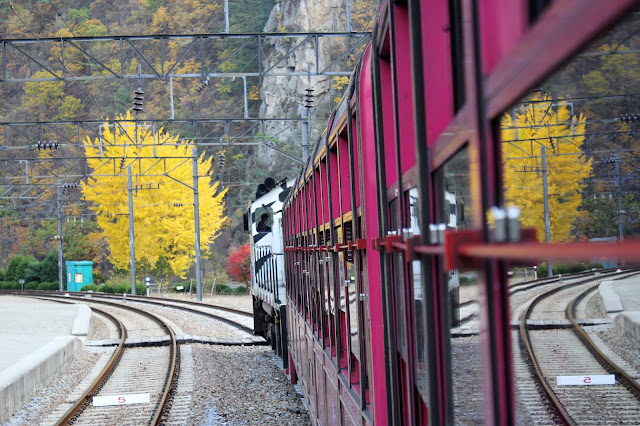 If you want to be surrounded by Mother Nature of Gangwon-do, you must visit here with V-train !