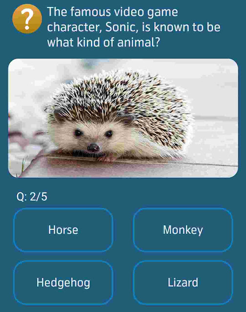 The famous video game character, Sonic, is known to be what kind of animal?
