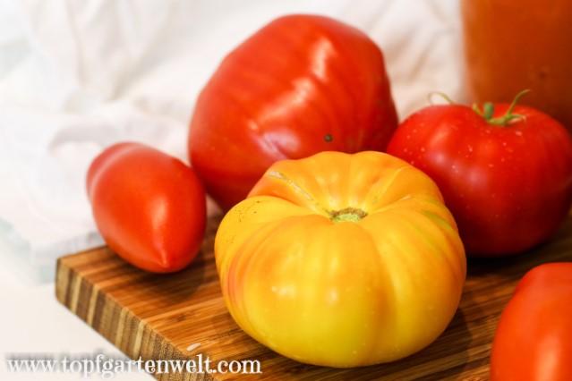 Tomatensauce für gefüllte Paprika - Foodblog Topfgartenwelt