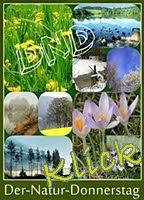 https://jahreszeitenbriefe.blogspot.com/search/label/Naturdonnerstag
