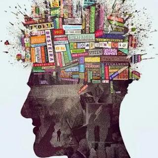 نظرية المعرفة من منظور علم المعلومات
