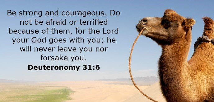 Be strong and courageous. Do not be afraid or terrified because of them, for the Lord your God goes with you; he will never leave you nor forsake you.