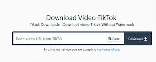 tiktok video download tanpa watermark