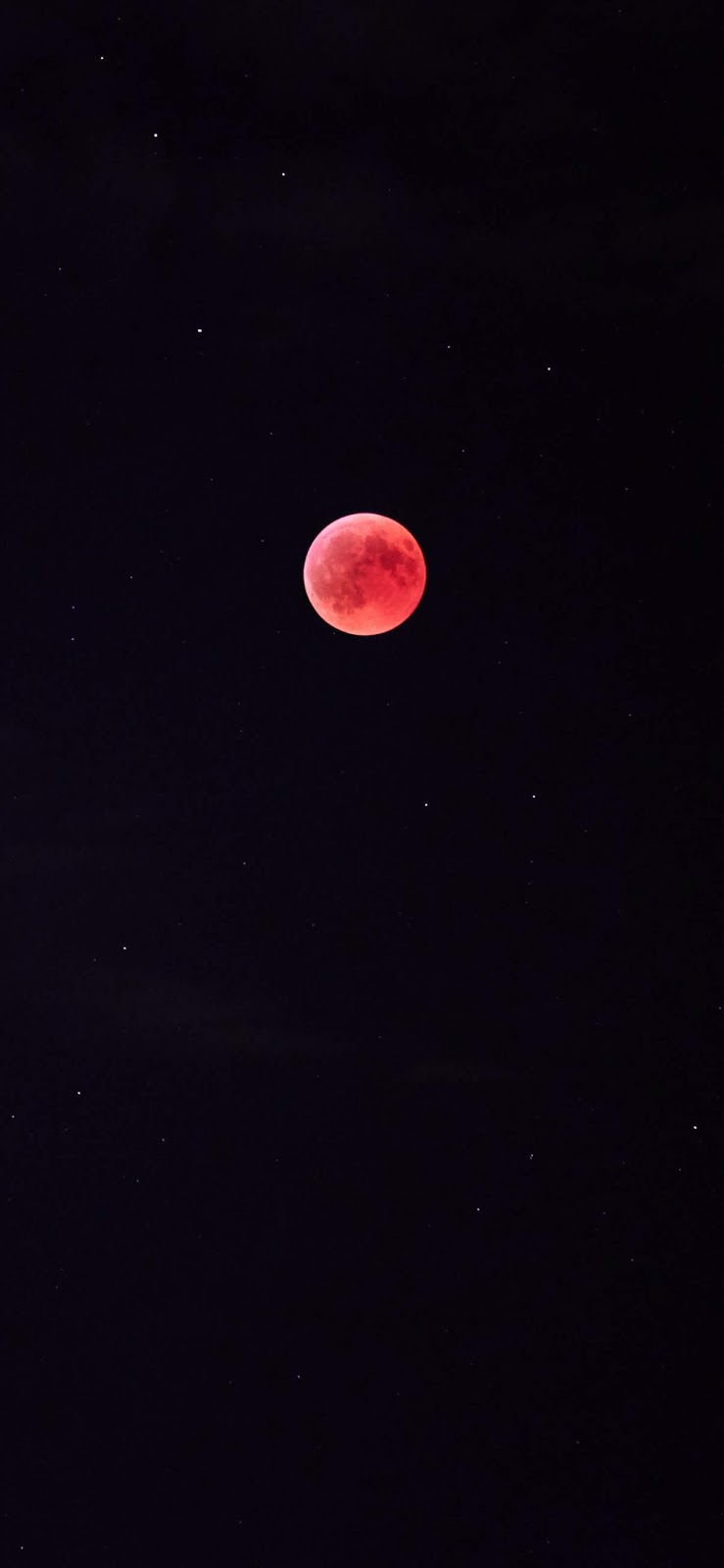 Red full moon wallpaper