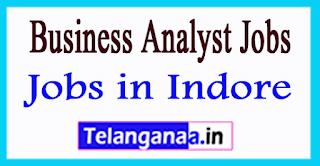 Business Analyst Jobs in Indore Madhya Pradesh
