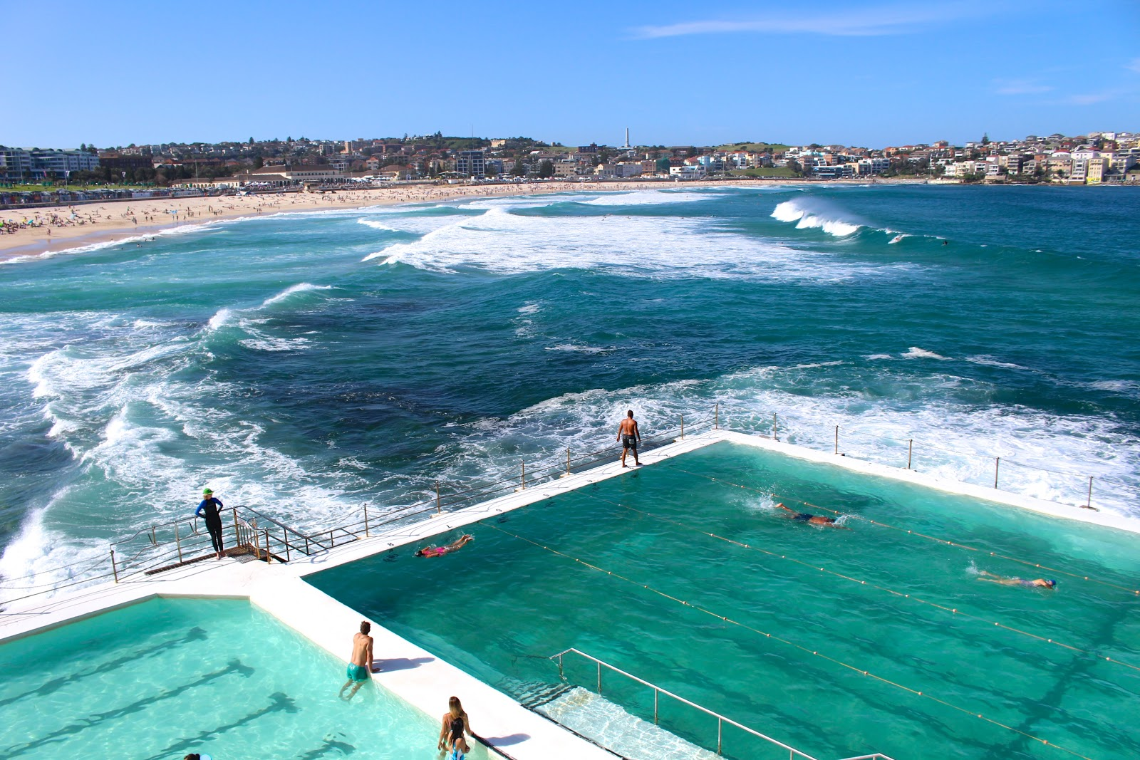 Travel blog whiskers & lions - Bondi Beach icebergs