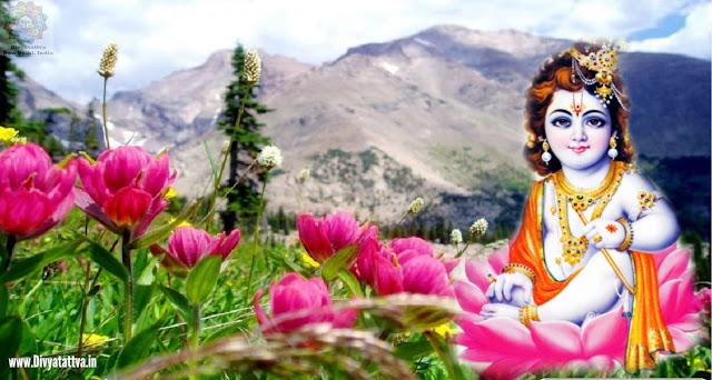 lord little krishna images, Índian God Sri Krishna 4K UHD Wallpapers, Baby Krishna Background Images, real baby krishna images hd