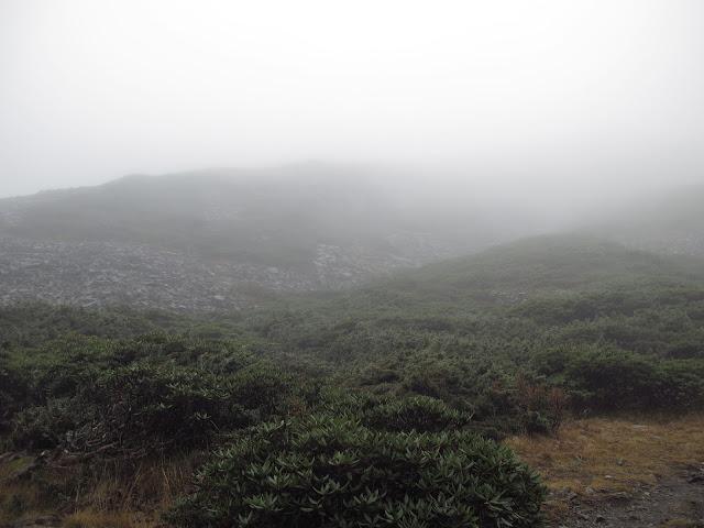 IMG 5962 - 台中登山│台灣第二高峰,雪山主峰、東峰兩天一夜攻頂!這兩天是我最難熬的一夜