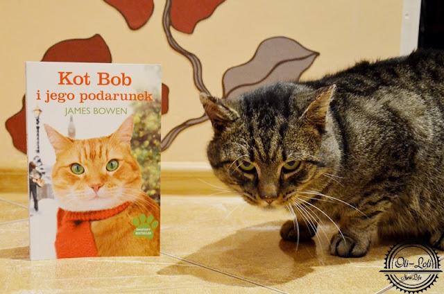 Kot Bob i jego podarunek. Recenzja