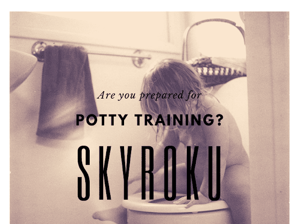 Ready To Potty Train? Find The Best Seat With Skyroku