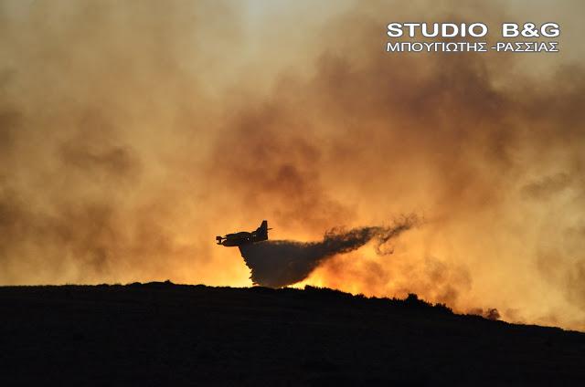 Πυρκαγιά στη Μεγαλόπολη σε δύσβατη περιοχή - Με αεροπλάνα η κατάσβεση