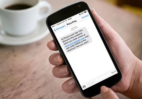 Jasa SMS Bisnis