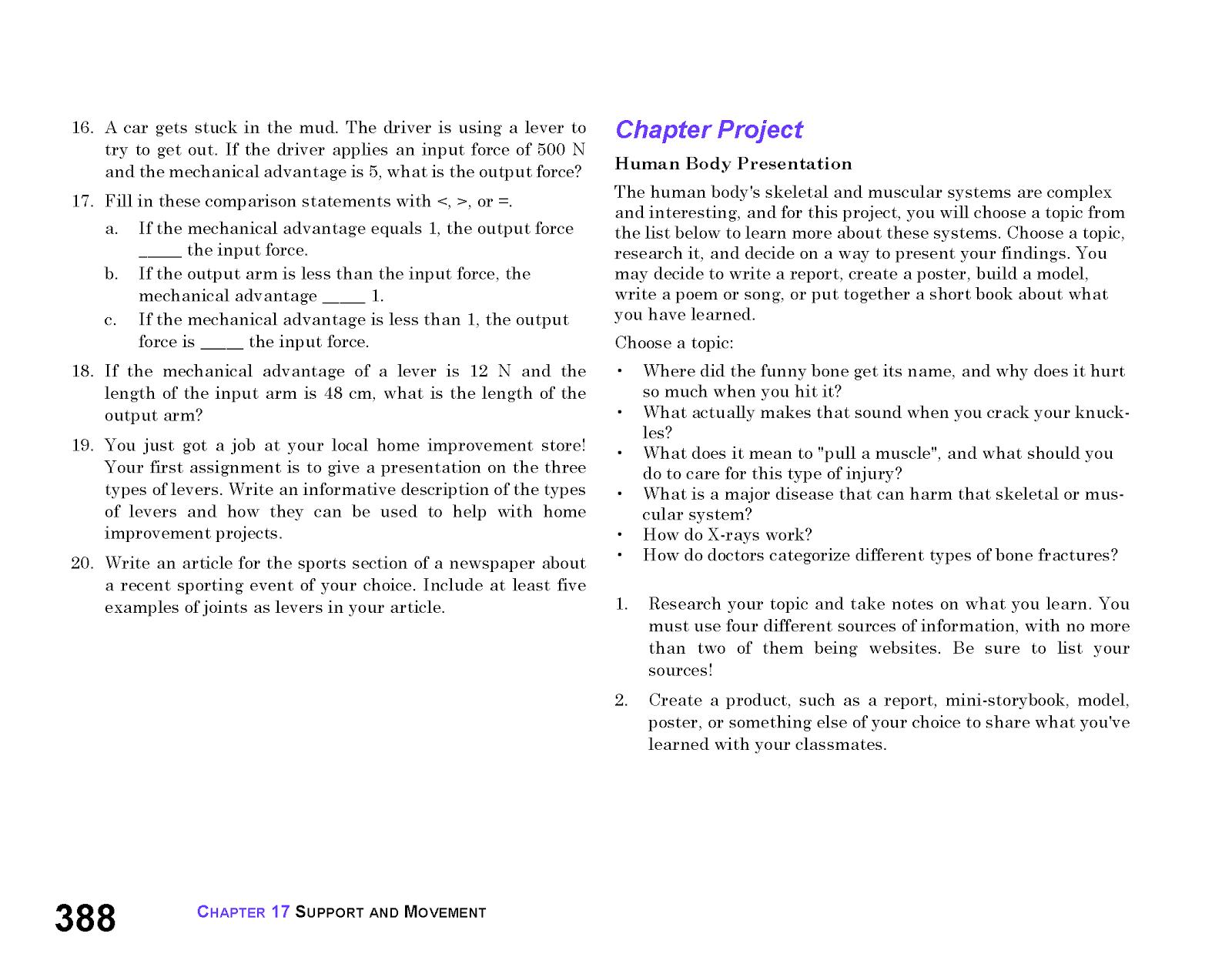 7th grade book report options