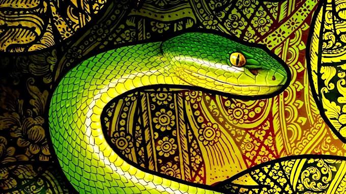 Cobra, Réptil, Arte