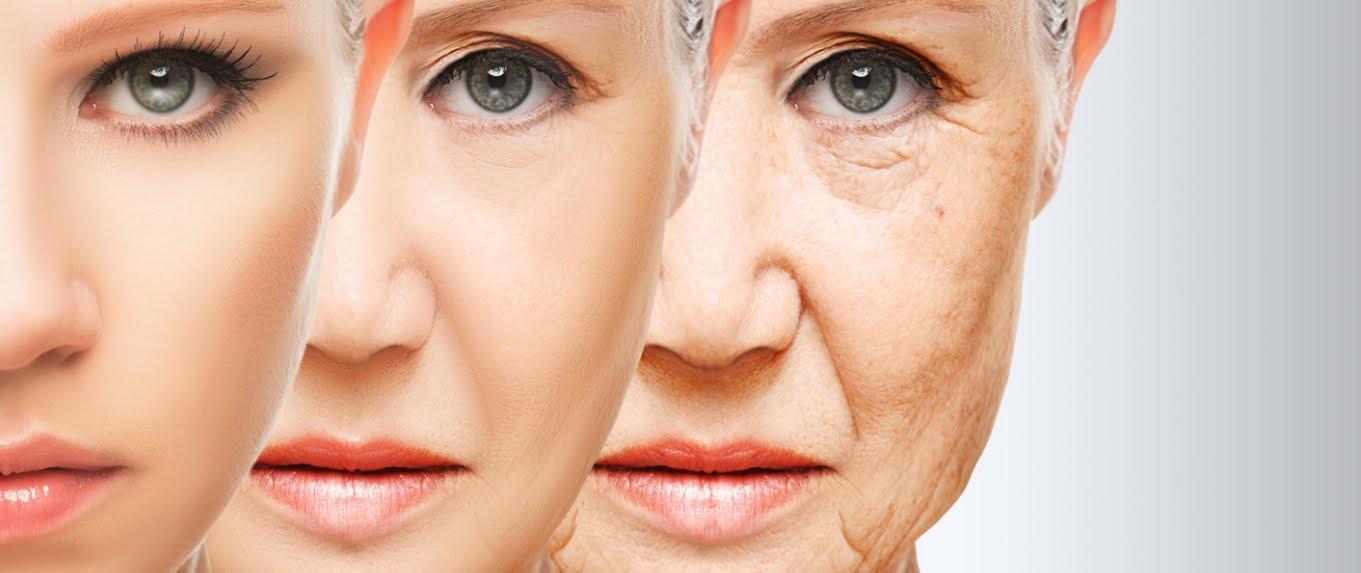 Sensazionale: scoperti Composti che riducono Invecchiamento Cellulare del 50%.