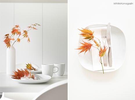 Eine Tischdekoration mit Herbstzweigen - Federarhornzweige auf dem Teller!