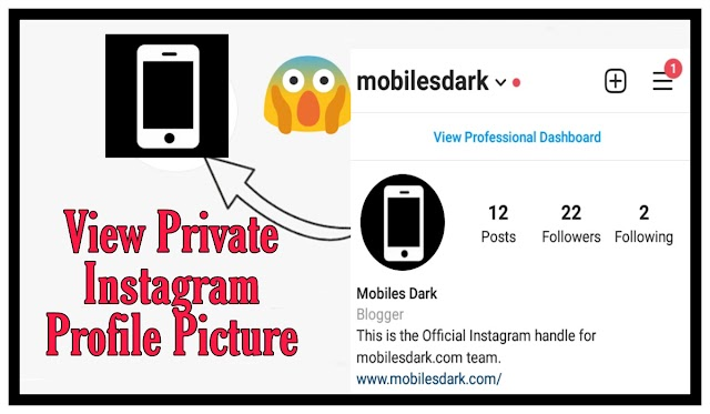 How to view public and private instagram account full profile picture?