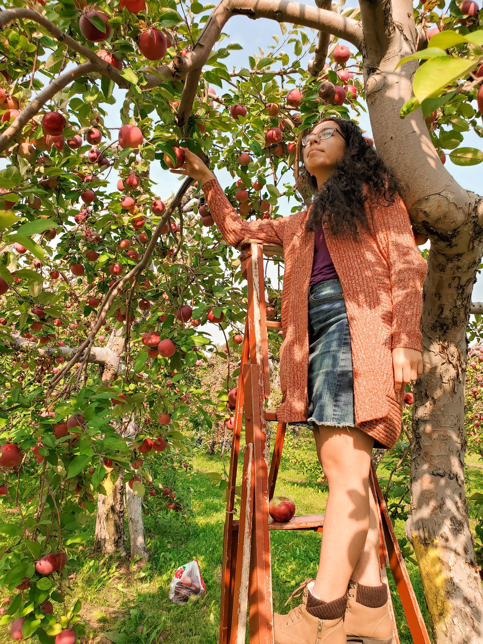 APPLE picking fun fall activities that i did in 2020
