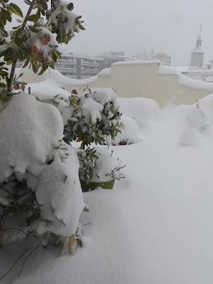 Madrid-nevada
