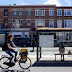 Over 300 bus stations in the Netherlands have been converted into 'bee stops.'
