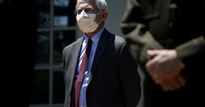 Dr. Fauci wearing a face diaper