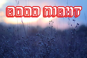 new good night images 2020