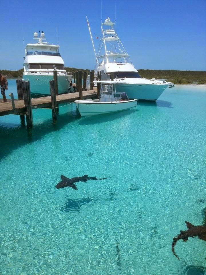 #2. Exuma, Bahamas consists of over 360 islands or cays with crystal clear water everywhere. - 12 Places To Swim With The Clearest, Bluest Waters. #2 Wow!