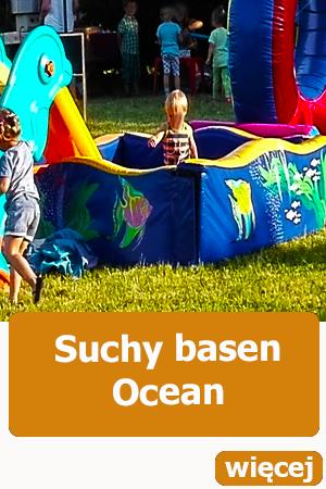 Ocena suchy basen z  piłeczkami, atrakcje dla dzieci