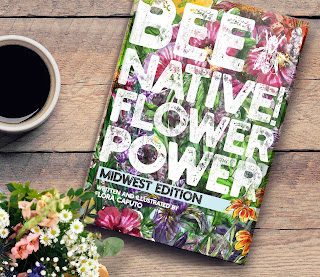 save the bees by planting natives using this guidebook