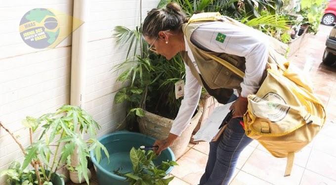 Proibição de contratação temporária de Agentes Comunitários de Saúde e Agentes de Combate à Endemias pelos municípios